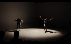 Alleyne Dance Company Performances